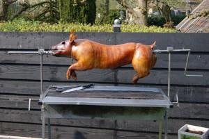 varken aan het spit
